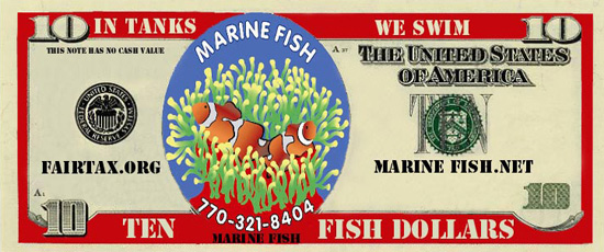 Save money at Marine Fish and Reef